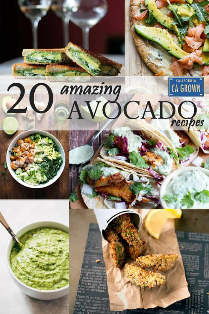 20 Amazing California Avocado Recipes