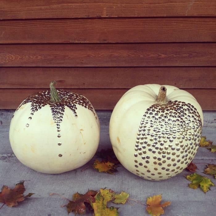 thumb tack pumpkin