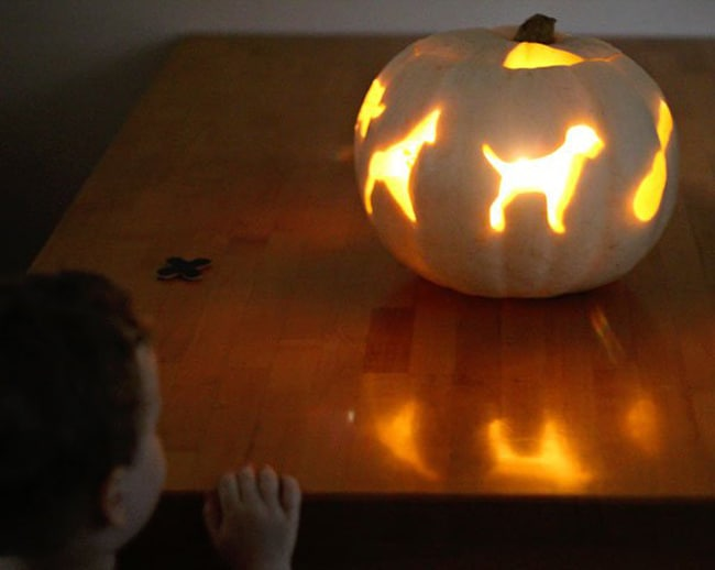 cookie cutter pumpkin