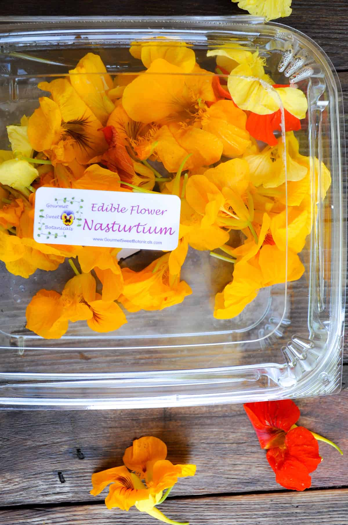 floral butter using edible flowers and herbs
