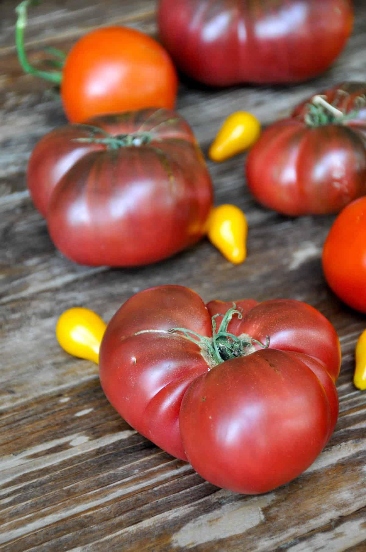 You say Tomato, I say Tomato: Fabulous California Tomato Recipes
