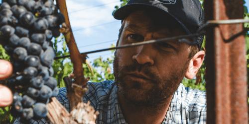 Meet a Farmer: Mark Fowler, Associate Winemaker at Skinner Vineyards