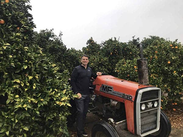 A farmer in a citrus grove next to a red tractor.