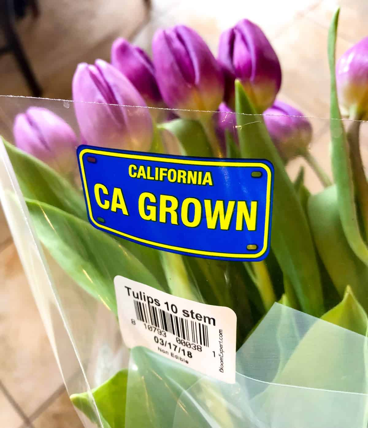 California Grown Tulips