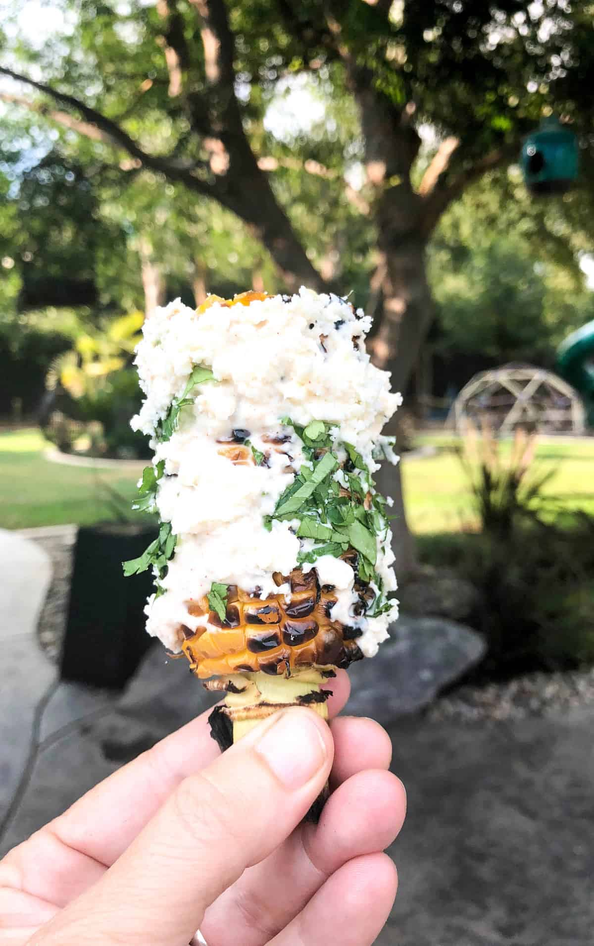 Street Corn! California style!