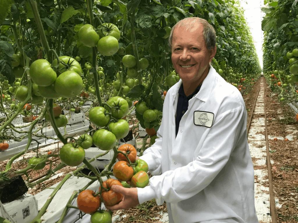 Meet a Farmer: Ion Sfetcu of Houwelings Tomatoes