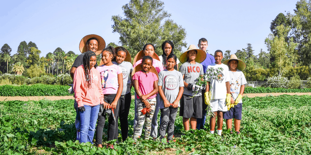 Meet a Farmer: The Sweet Potato Project