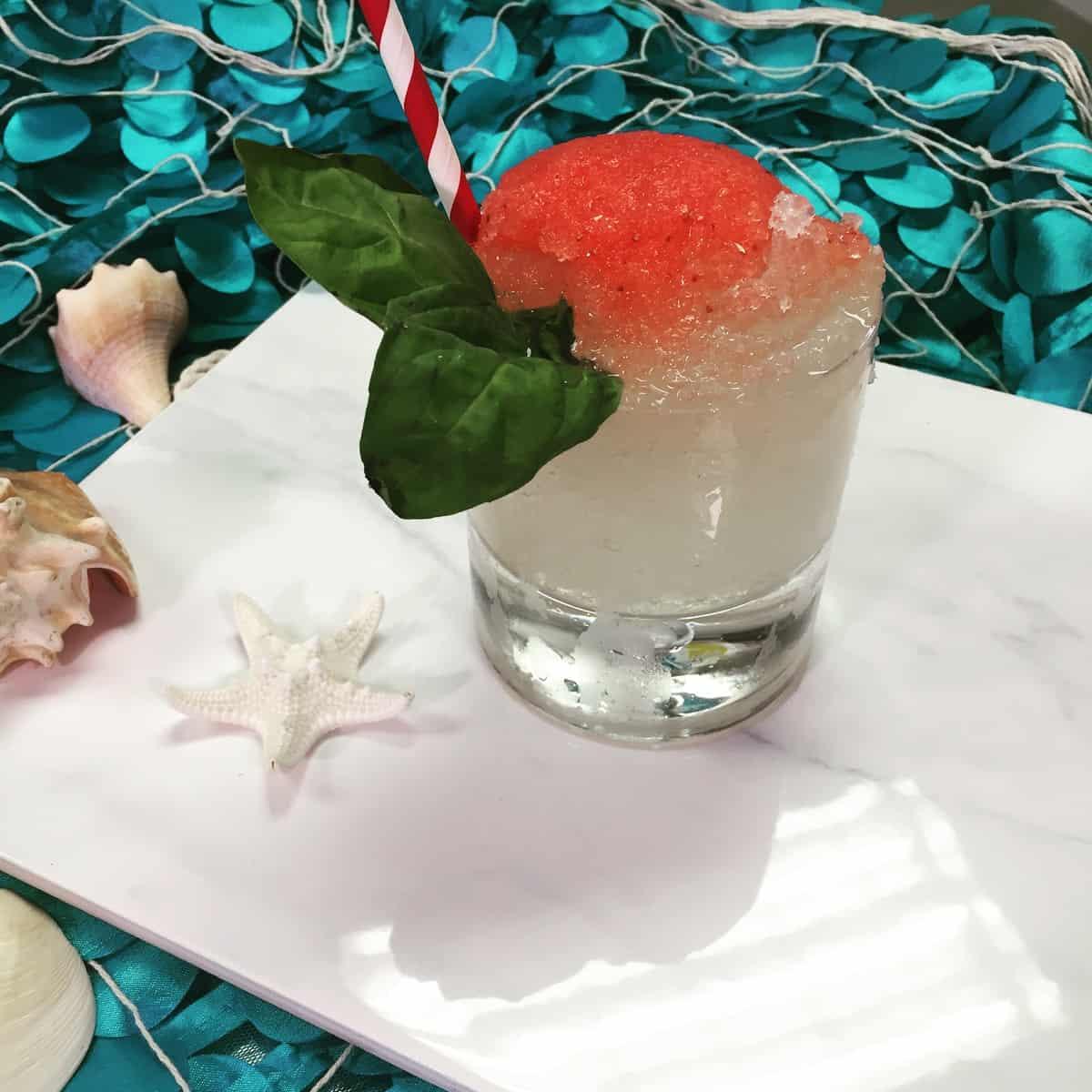 Snowcone Margarita