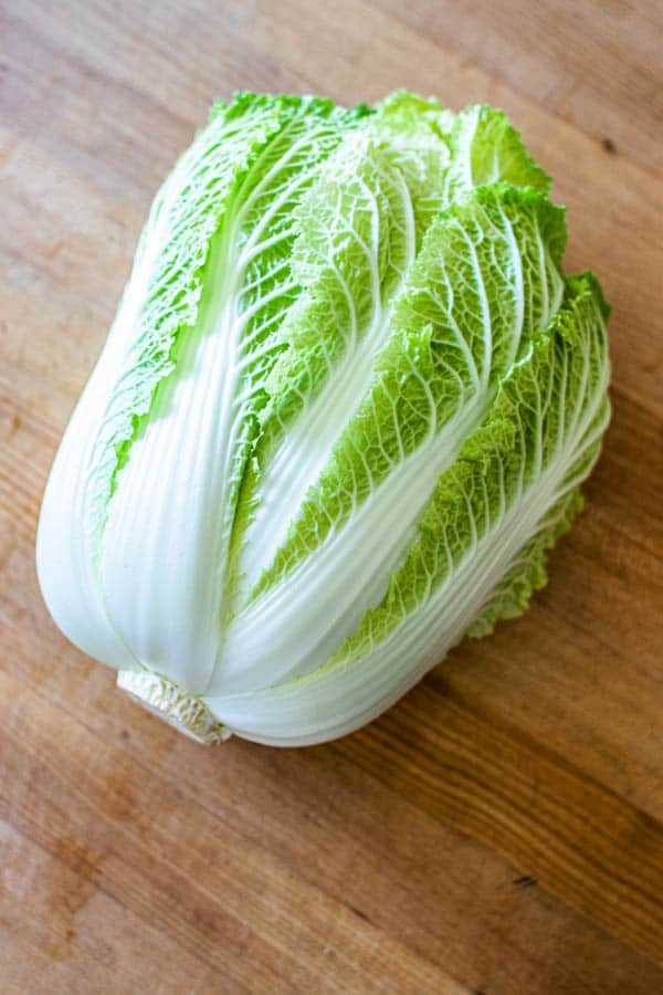 A head of fresh Napa cabbage.