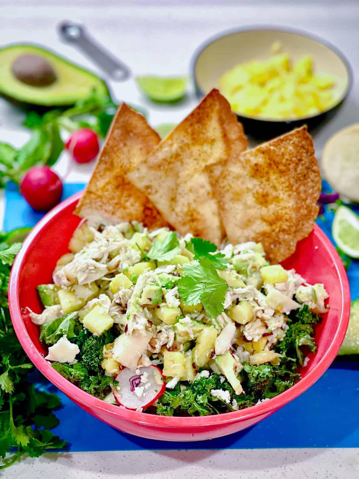 Tropical Chicken Tostada Salad