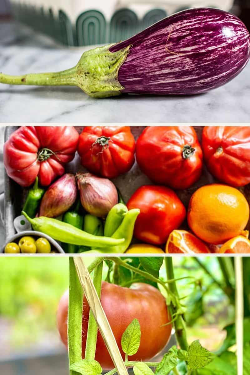 Three Easy To Grow Vegetables for Your Garden