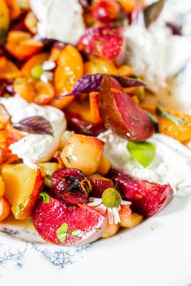 A close up image of a variety of stone fruit, chopped and tossed with a citrus basil dressing and served with burrata.
