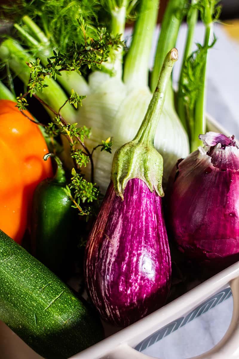 A close up of a homegrown graffiti eggplant for caponata of eggplant.