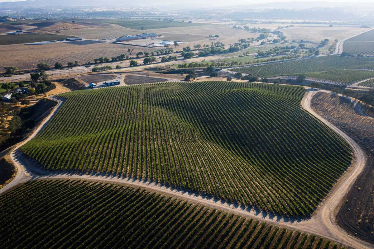 The Heart & Soul of California Wine Country – Paso Robles